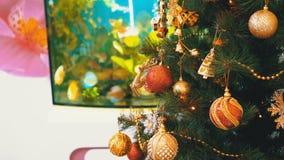 Julgran med bollar, garneringar och en girland framme av akvariet inom rummet stock video