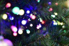 Julgran med girlanden, ljus av olika färger Fotografering för Bildbyråer