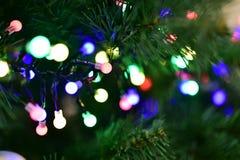 Julgran med girlanden, ljus av olika färger Arkivbild