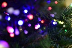 Julgran med girlanden, ljus av olika färger Royaltyfria Foton