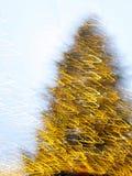 Julgran med gula defocused ljusa kulor Arkivfoto