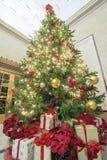 Julgran med högväxt perspektiv för gåvor royaltyfri fotografi