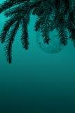 Julgran med huvudet för signal för genomskinlig bollgarnering det marin- Arkivbild