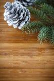 Julgran med kottar Arkivfoton