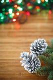 Julgran med kottar Arkivbilder