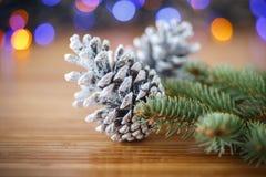 Julgran med kottar Arkivfoto