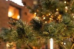 Julgran med kottar på en stadsgata exponerad med en girland och som annonserar ljus royaltyfri foto