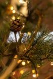 Julgran med kottar på en stadsgata exponerad med en girland och som annonserar ljus fotografering för bildbyråer
