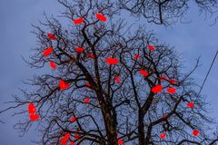 Julgran med lästa hjärtor mot blå himmel på Tivoli Garde Fotografering för Bildbyråer
