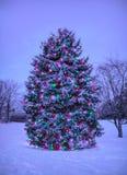 Julgran med ljus utanför i snö Royaltyfria Bilder