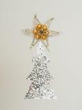 Julgran med stjärnan på överkanten Royaltyfria Bilder
