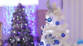 Julgran och julpynt stock video