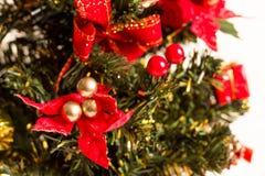 Julgran och kort för nytt år royaltyfri foto