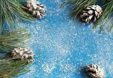 Julgran och kottar i snön på en blå bakgrund och snö royaltyfria bilder