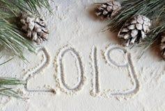 Julgran och kottar i snön på en grå bakgrund och snö för nytt års hälsa kort med nummer 2019 arkivbild