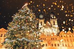 Julgran på den huvudsakliga fyrkanten i Prague fotografering för bildbyråer