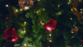 Julgran på den utomhus- marknaden stock video