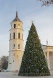 Julgran på domkyrkan av Vilnius arkivbilder
