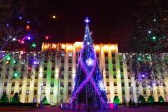 Julgran på natten Royaltyfria Bilder