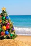 Julgran på sanden i stranden Royaltyfria Foton