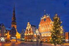 Julgran på stadshusfyrkant i Riga Royaltyfri Bild