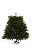 Julgran som är aktivering i 16 bildserie Royaltyfria Bilder