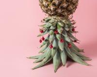 Julgran som göras av ananassidor Minsta begrepp för ferie arkivfoton