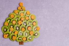 Julgran som göras av kiwi och kumquaten Fotografering för Bildbyråer