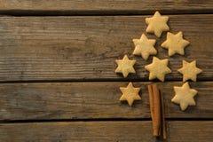 Julgran som göras med stjärnaformkakan och den kanelbruna pinnen royaltyfri foto