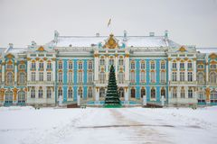 Julgran-träd i bakgrunden av Catherine Palace på en molnig December dag Vinter i Tsarskoye Selo St Petersburg, Royaltyfri Foto
