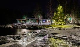 Julgran vid sjön Arkivbilder