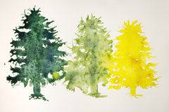 Julgranar i guling, ljus - gräsplan och mörker - gräsplan Royaltyfri Foto