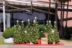 Julgranar med garneringar som är inklusive och reflexionsljus på varuhuset Royaltyfri Bild
