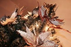 Julgrancloseup - detalj royaltyfria bilder