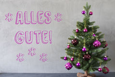 Julgranen cementväggen, Alles Gute betyder gratulationer Arkivfoton