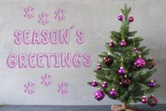 Julgranen cementväggen, text kryddar hälsningar Arkivfoton