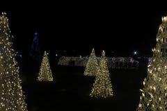Julgranen gjorde vid ljus royaltyfri bild