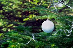 Julgranen julleksaker, boll, pryder med pärlor Royaltyfria Foton