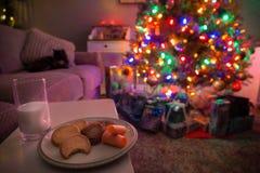 Julgranen med gåvor under det och kakor och mjölkar lämnat ut för jultomten och renen royaltyfria bilder