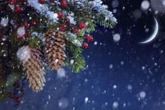 Julgranen räknade snow på den blåa nattskyen Arkivfoton