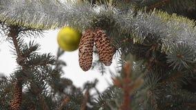 Julgranen som dekoreras med leksaker och glitter, kottar väger på filialer av gran-trädet Närbild lager videofilmer