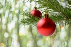 Julgranfilial med den röda prydnaden och bokeh Arkivfoton