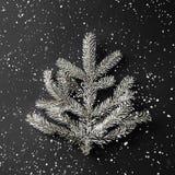 Julgranfilial på mörk svart bakgrund med snöflingor Tema för Xmas och för nytt år royaltyfri bild