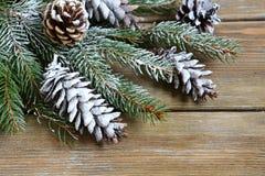 Julgranfilial som täckas med konstgjord snö Royaltyfri Foto