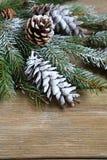 Julgranfilial som täckas med konstgjord snö på bräden Royaltyfria Bilder