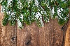 Julgranfilialer över träbakgrund Gräsplan gränsar Royaltyfria Foton