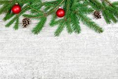 Julgranfilialer med bollar och kottar på den vita träbakgrunden Royaltyfri Fotografi