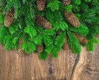 Julgranfilialer med kottar över träbakgrund Royaltyfri Bild