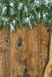 Julgranfilialer med snö över träbakgrund Royaltyfri Bild