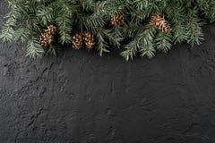 Julgranfilialer och att sörja kottar på mörk bakgrund med snöflingor Tema för Xmas och för nytt år arkivbild